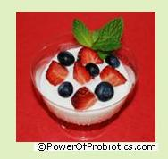 Yogurt can contain Lactobacillus acidophilus