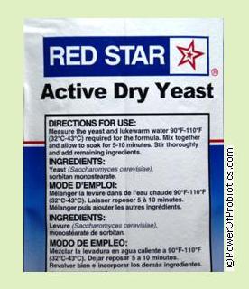 Baker's yeast is a Saccharomyces species